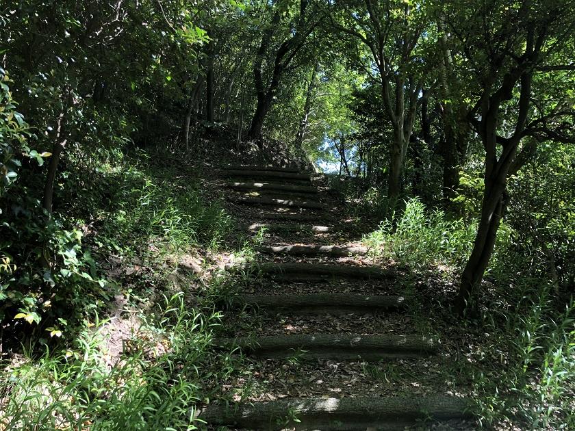 竹林を抜けた階段