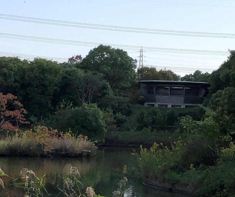 池から見た市川野鳥観察所