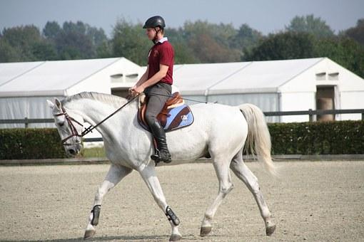 白馬で乗馬する少年