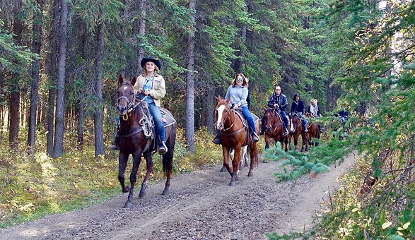 林道で乗馬を楽しむ外人