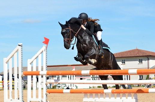 障害物を乗り越える馬
