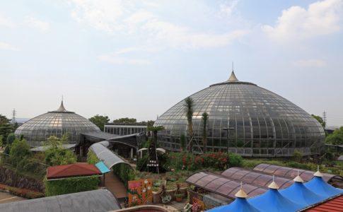 姫路市温室植物園外観