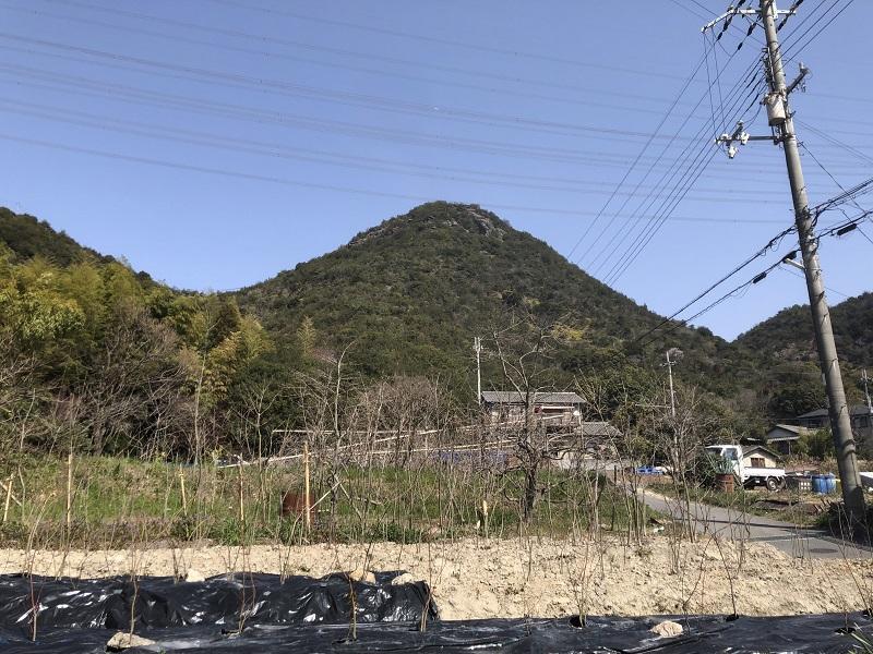 麻生八幡宮から見た小富士山の外観
