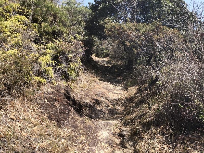 麻生山の登山道