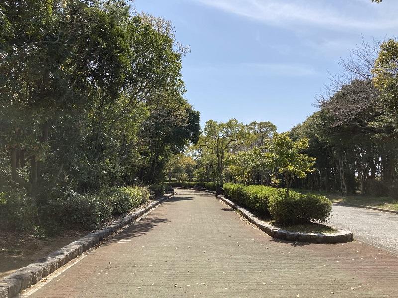 赤穂海浜公園の道路