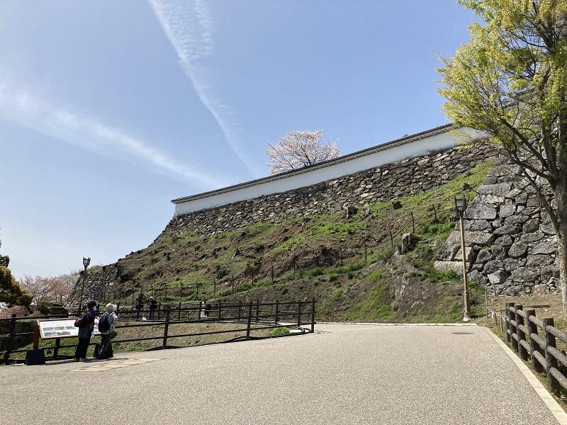 黒田官兵衛が普請した姫路城の石垣