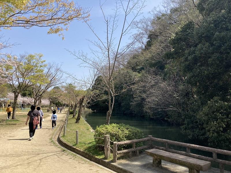 姫路城の原生林