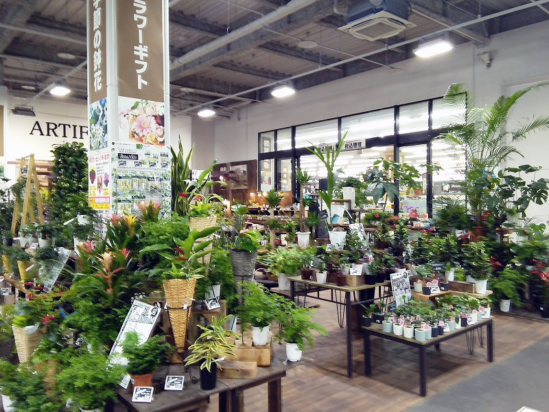 ムサシ姫路店のガーデニング・アウトドア売場